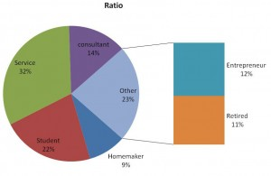 customer demographics profile